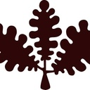 福岡市南区 パン教室 oak
