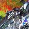 秋を探しに 紅葉プチプチツーリング