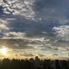 天気と空と:2020-06-11〜06-15