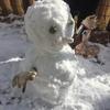 雪が降ったら雪だるまを作ってしまう