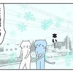 ノラネコ探しのお散歩