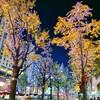 大阪御堂筋のイルミネーション【Samsung s10で撮ってみた】