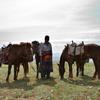 格安で乗馬を教えてくれるモンゴルの遊牧民を探す方法