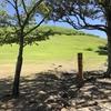 【写真】若草山に登ってきた!夏の奈良を満喫。