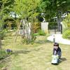 理想の庭作り スタート