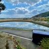 横ヶ倉地区の池群(長崎県福江島)