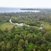 トゥドゥマリ浜の池(仮称)(沖縄県西表島)