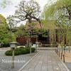 京都「千本釈迦堂(大法恩寺)」と上七軒の「くろすけ」へ行く