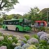 高塔山を走る、北九州市営バス 若松あじさい祭り 2019年6月16日