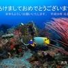 水中写真を使った年賀状(1)