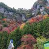 🌋紅葉本番・色のある世界【香落渓】名張市~曽爾村(三重・奈良)