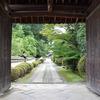 京都ぶらり女の1人旅 小野小町の随心院