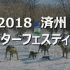 済州島(チェジュ島)イベント情報*ウィンターフェスティバル