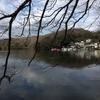 伊豆の瞳「一碧湖」。1周4キロの散策!【伊豆旅行第2弾】