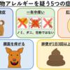 『犬猫の食物アレルギー、食物不耐症』で現れる症状について
