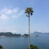 人も空気も暖かい南国・宮崎でのんびり観光♪