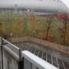 今年5回目の札幌ドームは雪降る中を北海道コンサドーレ札幌を応援に...大黒摩季も来たよ