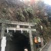 鎌倉の弁財天に関わる神社を巡りました。