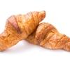 酵素ダイエットと酵母ダイエット、どっちを選ぶべき?二つの違いは?