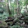 鬼ヶ鼻岩〔第591歩〕