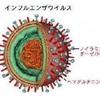 3272  院内感染インフル