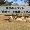 奈良の「鹿寄せ」イベントは、可愛らしい