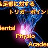 4月は膝痛&足部痛祭り!!札幌、東京、大阪開催だ!!