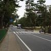 もし、奈良で「鹿」が横断歩道を横切ってきたら…