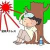 燃える日本列島、猛暑ストレスで一億総イライラ化!!
