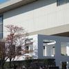 大嘗宮一般参観と乾通り一般公開見学へ⑭『北の丸公園の銀杏、国立近代美術館、パレスサイドビル』