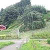 《11.3.11》被災地東北、18次<巡訪>/ ➁1日目(2)福島県三春町から安達太良山麓…星空  今回のテーマ「つぎのステップにむけて」