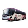 東京・大阪の夜行バス「チェリッシュ」は女性専用で安心・快眠!【VIPライナー】