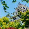 日本最古の木造再建城の郡上八幡城へ行ってきた【2017.04.30】