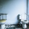 【悲報】『ダイヤモンドは砕けない風』の低品質トイレがコチラッ!!!!!