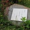 万葉歌碑を訪ねて(その1021)―愛知県豊明市新栄町 大蔵池公園(3)―万葉集 巻十七 三九七四