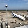 【赤ちゃん 関東でお出かけ】羽田空港で飛行機を見てご機嫌