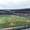 野球で負け、馬で負け(7月2日 千葉ロッテVS北海道日本ハム@ZOZOマリン 観戦レポ)