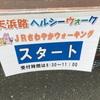 浜名湖佐久米のユリカモメ