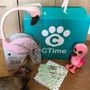 【CTimeSNS】愛木らむの9月の認定CTimerプレゼント