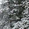 「岩手の和尚さん」を福田こうへいさん歌う。
