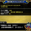 level.1045【ウェイト140・赤い霧】第40回闘技場チャレンジカップ初日