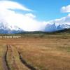 Paine Grande。そして、Grey氷河へ。 Paine Trekking [2]