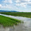 「農業特区」新潟の実証事業、先端技術の利用は直ぐ目の前。