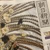 105周年 大輪のフェアリー@朝日新聞 宝塚105周年記念別刷
