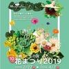 【沖縄こどもの国】花まつり2019行ってきた