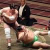 閑話小題 ~ つれづれに …大相撲の話