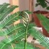 新芽を広げるエバーフレッシュと期間限定シロノワール