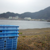 2月25日(日)高知市の日曜市と、小雨模様の須崎の街並み。