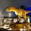 大迫力、恐竜博物館! 福井県勝山市(77/1741)