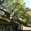 (Kyoto-40/Ichijoji-Ohara)日本美味しいもの巡り Japan delicious food and wine tour
